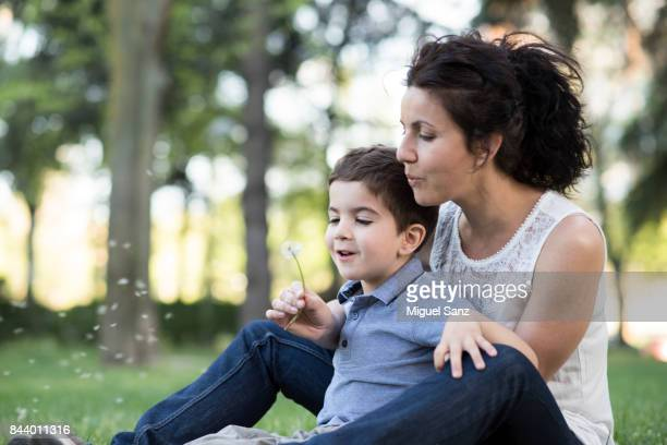 Mother and son Blowing Dandelion Seeds In the Park