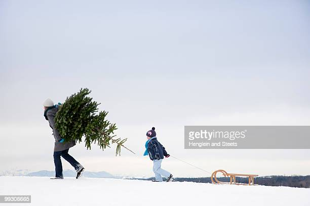 mother and son carrying christmas tree - country christmas stockfoto's en -beelden