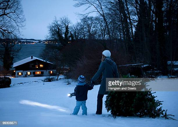 mother and son carrying christmas tree - night before stock photos and pictures