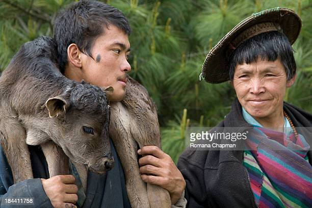 Mother and son cow herders carry the young calf around the neck. The lady's flat bamboo hat is a typical headgear for women in rural Bhutan. This...