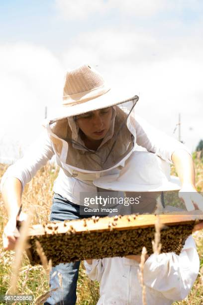 Mother and son examining honeycomb frame while standing on field during sunny day