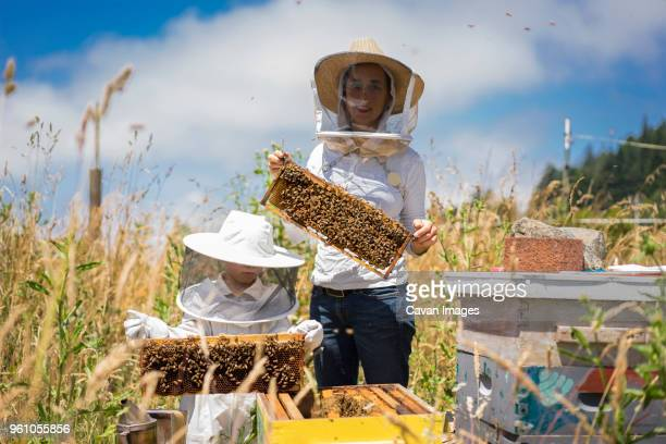 Mother and son holding honeycomb frames at field