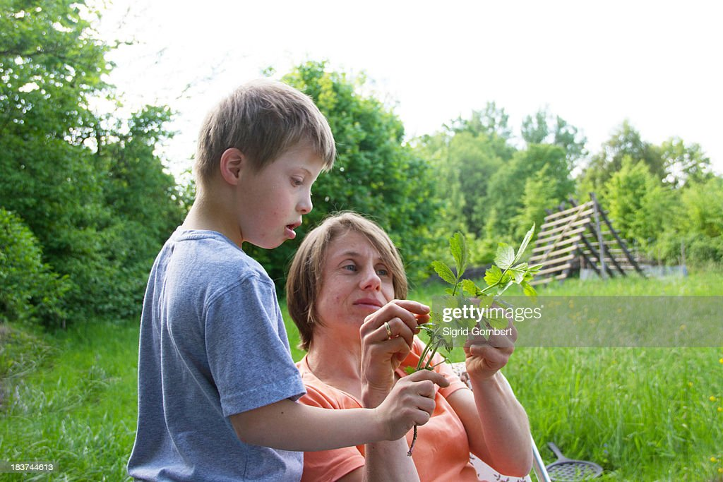 Mother and son looking at stem of leaves : Stock-Foto