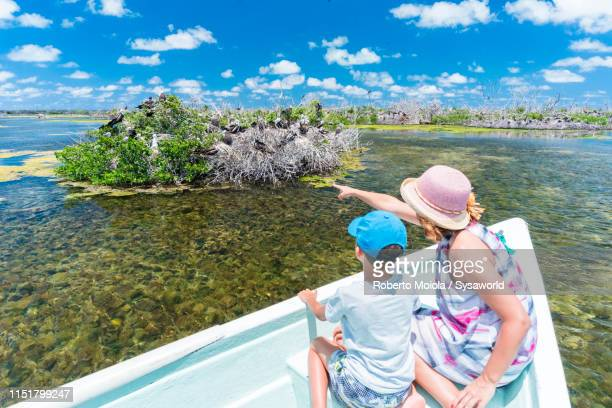 mother and son on tour boat, frigate bird sanctuary, barbuda, caribbean - rookery stock pictures, royalty-free photos & images