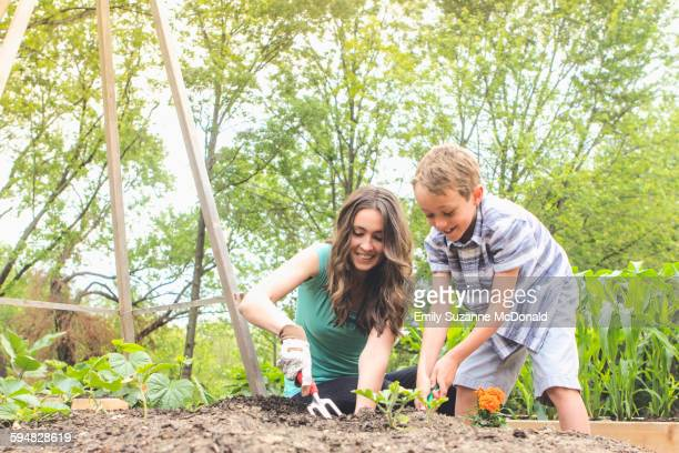 Mother and son planting in garden