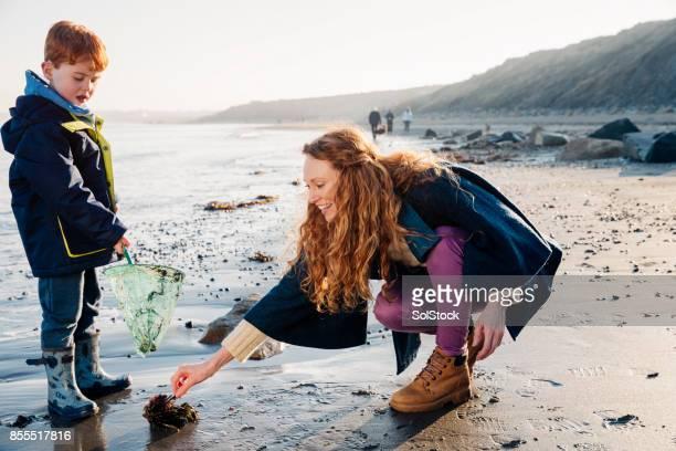 Mutter und Sohn spielt am Rand des Wassers an einem Wintertag