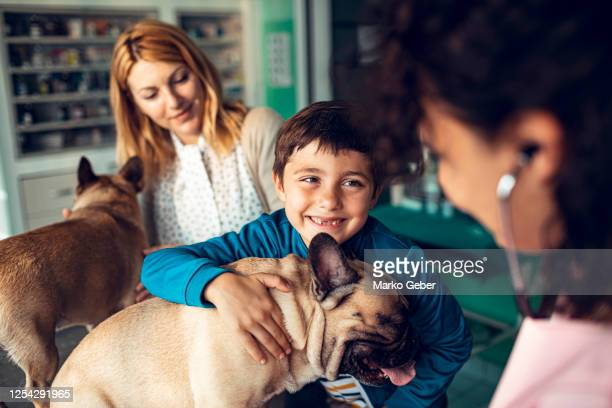 mother and son taking their dogs to the veterinarian - one animal stock pictures, royalty-free photos & images
