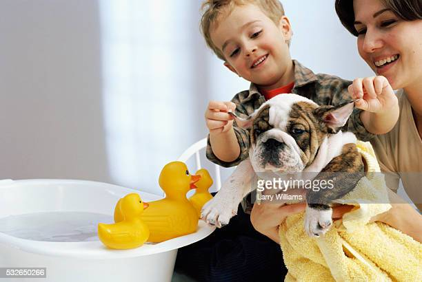 Mother and Son Washing Bulldog Puppy