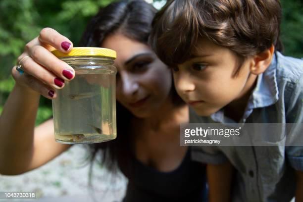 母とオタマジャクシと息子 - ペルシア文化 ストックフォトと画像