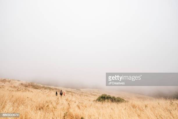 Mother and sons walking in misty field, Fairfax, California, USA, North America