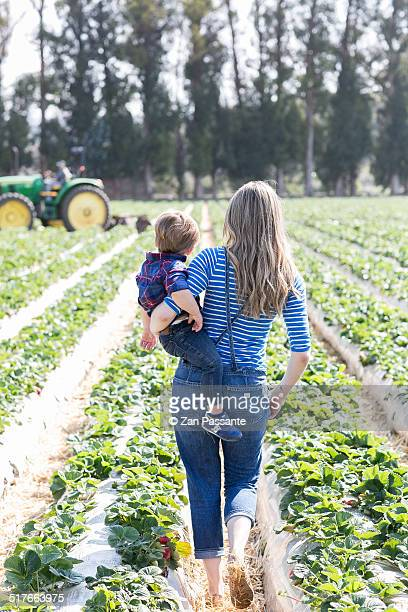 Mother and Toddler Walk Through Strawberry Patch
