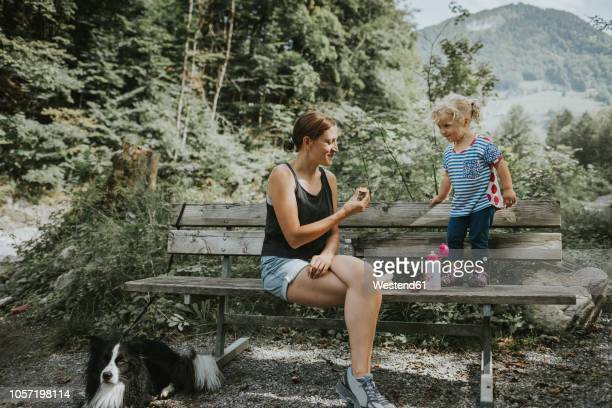 mother and toddler with dog on a bench in forest - picknick stock-fotos und bilder