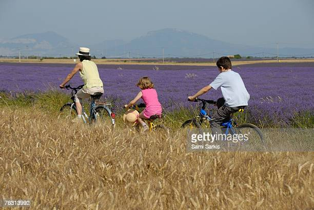 Mother and two children (6-13) cycling through fields, rear view