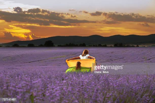 Mother and two daughters walking through a lavender field holding scarves, Bulgaria