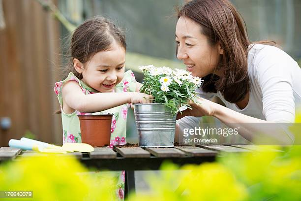 Mother and young daughter potting daisy plant in garden