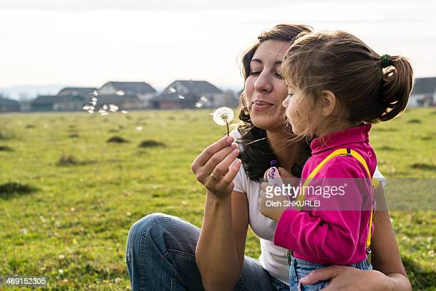 mother blowing dandelion with daughter - eastern european descent stock pictures, royalty-free photos & images