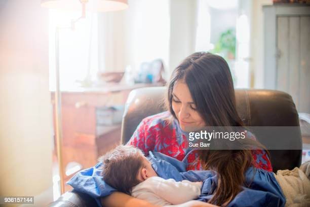 mother breastfeeding baby in chair - young mom breastfeeding stock photos and pictures
