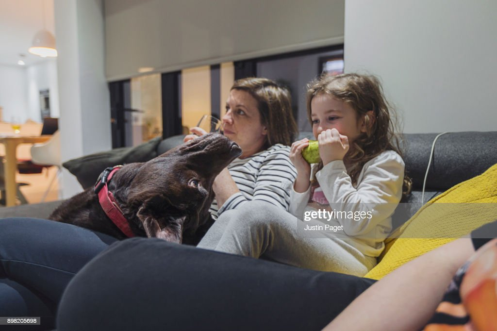 Mother, daughter and dog : Stock Photo