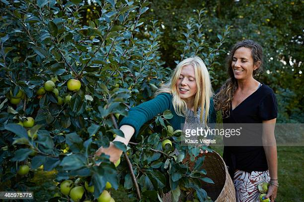 Mother & daughter picking apples in their garden
