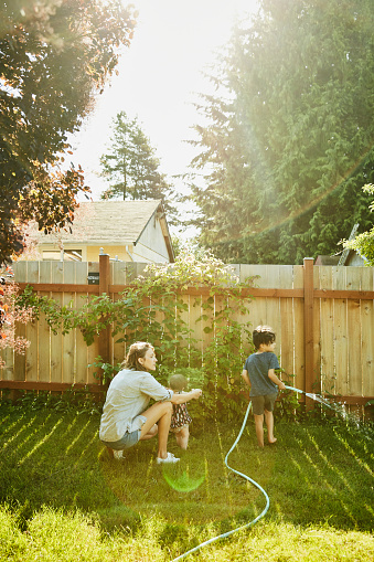 Mother helping infant daughter stand in backyard while son waters plants on summer morning - gettyimageskorea