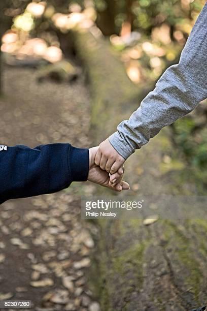 mother helps son walk on log, big basin redwoods s - big basin redwoods state park stock pictures, royalty-free photos & images
