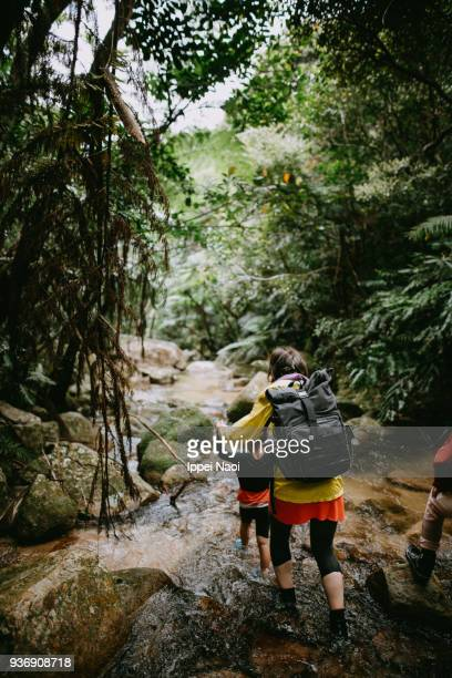 Mother hiking with her child in rainforest, Okinawa, Japan
