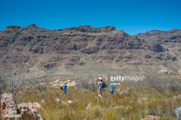 mother hiking with two sons in a wilderness area - wilderness area stock pictures, royalty-free photos & images