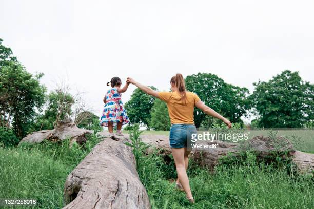 mother holding daughter's hand walking on log at park - copy space stock pictures, royalty-free photos & images