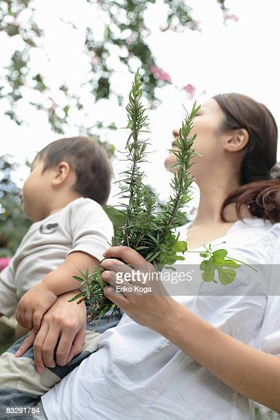 mother holding little boy  and  herbs - mint plant family stock pictures, royalty-free photos & images