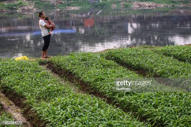 A mother hugs her kid near a vegetable field in Jakarta Indonesia on Wednesday October 17 2018
