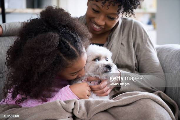 mother looking at daughter kissing lhasa apso while sitting on sofa at home - lhasa apso stock photos and pictures