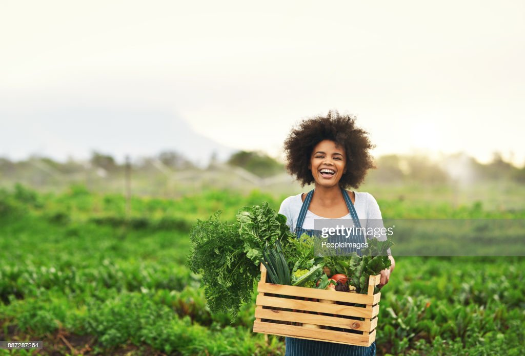 Mother nature provides : Stock Photo