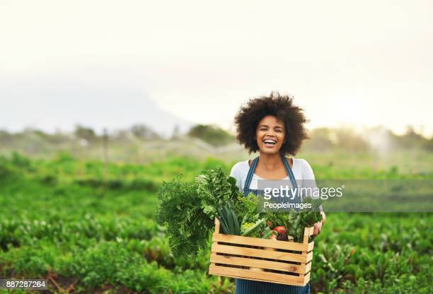 mother nature provides - sustainability stock photos and pictures