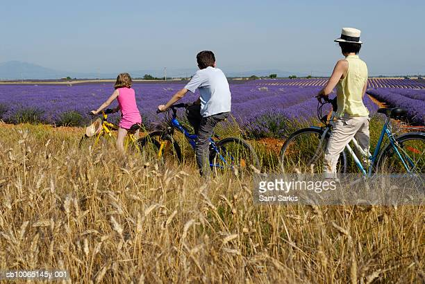 Mother, son (12-13) and daughter (6-7) contemplating lavender field during bicycle trip