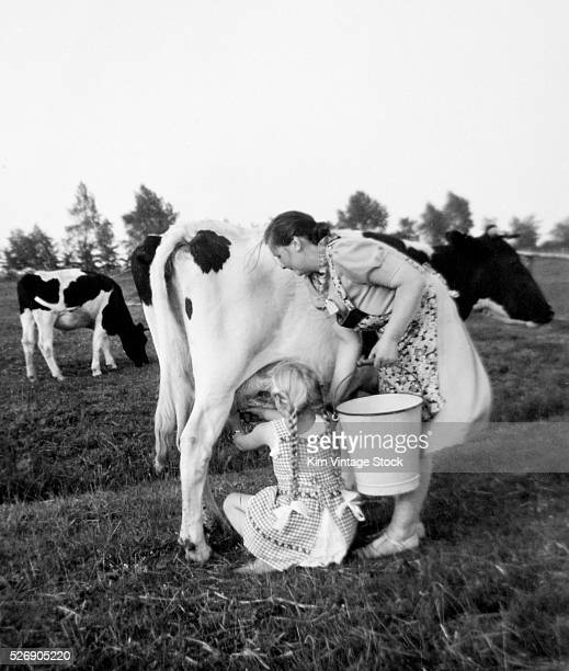 A mother teaches her pigtailed daughter how to milk a cow out in the pasture