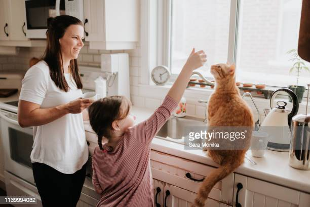 mother watching daughter play with cat on kitchen worktop - cat family stock pictures, royalty-free photos & images