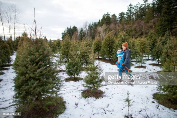 mother with baby in carrier and holding saw at christmas tree farm, langley, british columbia, canada - christmas tree farm stock pictures, royalty-free photos & images
