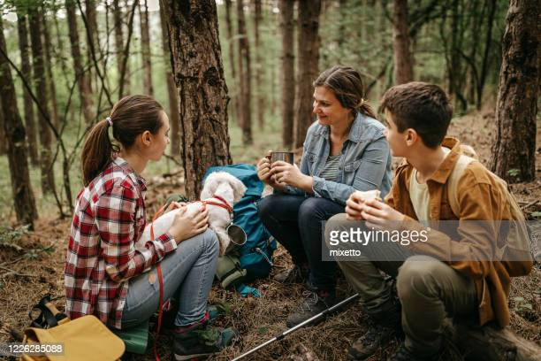 mother with children relaxing at forest - images foto e immagini stock