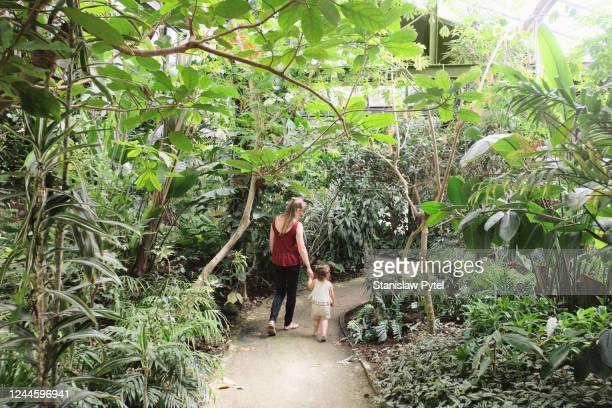 mother with daughter walking in botanic garden - 植物園 ストックフォトと画像