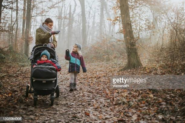 mother with daughters during forest walk in autumn - mannheim stock-fotos und bilder