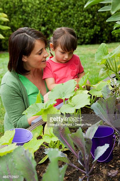 A Mother With Her Young Daughter Looking At Plants In The Garden