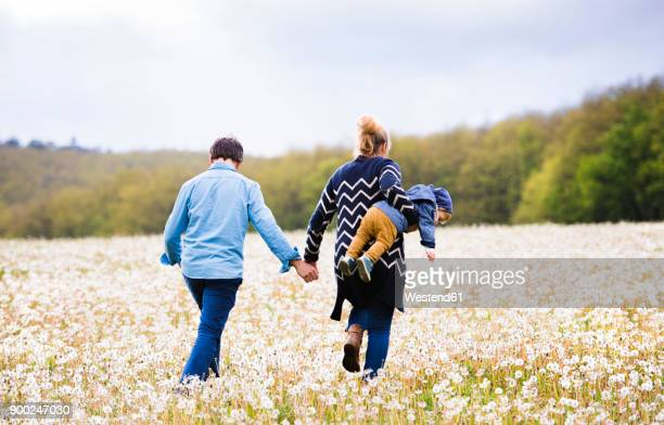 Mother with husband carrying little boy in dandelion field