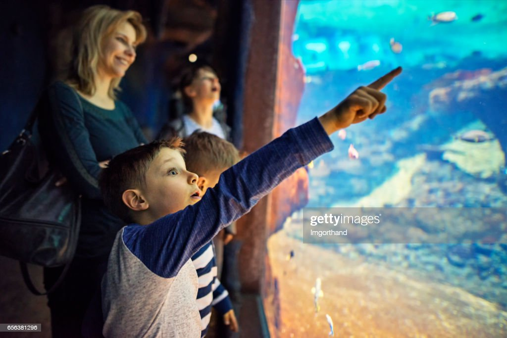 Mother with kids visiting a huge aquarium : Stock Photo