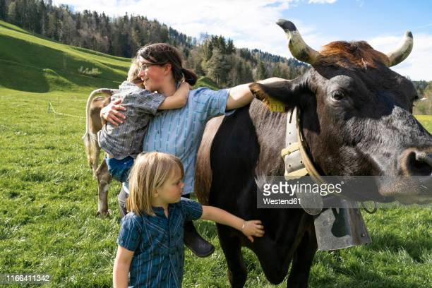mother with two children on cow pasture - pasture stock pictures, royalty-free photos & images