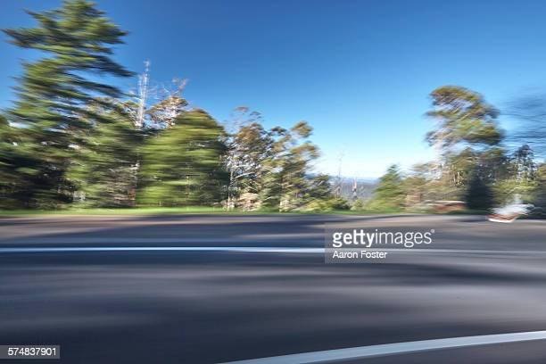 Motion forrest road
