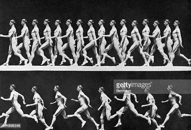 Motion study of an athlete on the march Undated photograph by Eadweard Muybridge