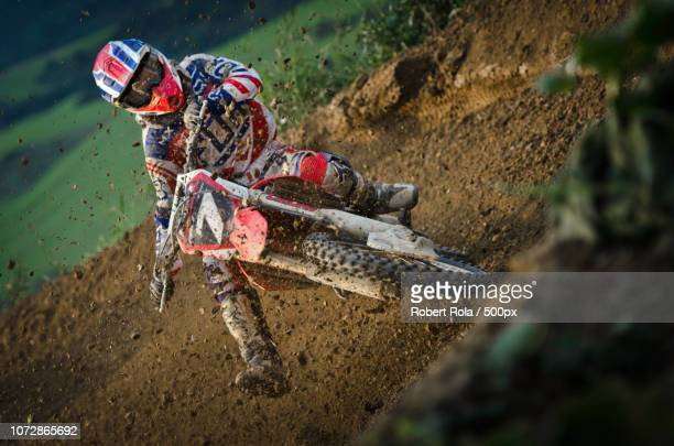motocross - coconut crab stock pictures, royalty-free photos & images