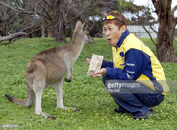 MotoGP rider Makoto Tamada feeds a kangaroo at the Phillip Island Wildlife Park Taken 14 October 2004 THE AGE EXPRESS Picture by JOHN FRENCH