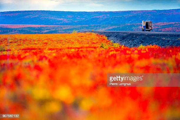 motor home stopped on the dempster highway in the beautiful colors of  arctic autumn, in august, yukon, canada - focus on background ストックフォトと画像
