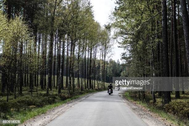 Motorbike ride in the forest